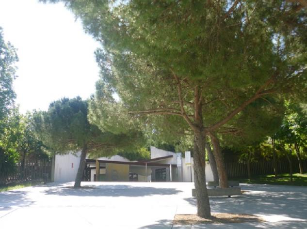 Pinos pi oneros entrada al jard n bot nico barcelona for Jardin botanico costo entrada