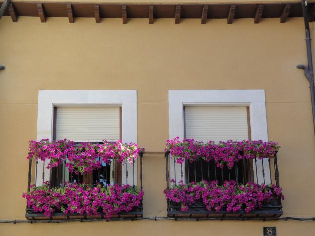Balcones Con Flores Moradas San Esteban De Gormaz Soria - Fotos-de-balcones-con-flores