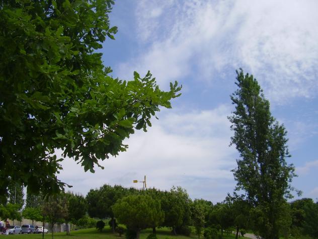 Tranquilidad del parque sant feliu de llobregat barcelona - Temperatura sant feliu de llobregat ...