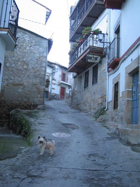 Calle casas del monte c ceres - Casas del monte casa rural ...