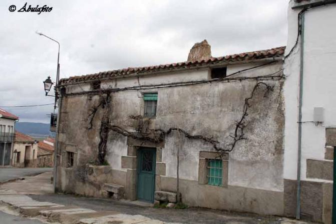 Casa antigua con vieja parra piedrahita avila - Casa rural casavieja ...