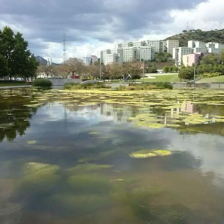 Lago can zam y barrio de las oliveras santa coloma de for Piscina can zam