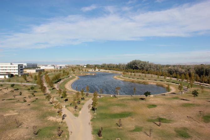 Lago Parque Lineal De Plaza Zaragoza