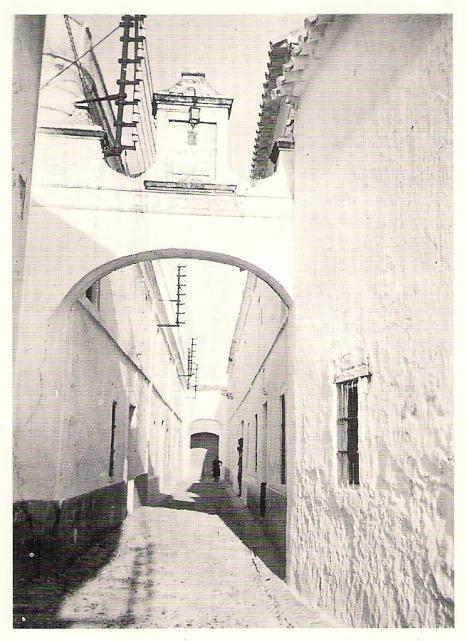 Calle purisima a o cincuenta palma del rio c rdoba for Calle palma del rio malaga