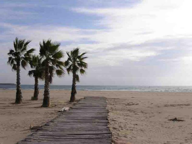 Playa con palmeras vilanova i la geltru barcelona - Muebles vilanova i la geltru ...