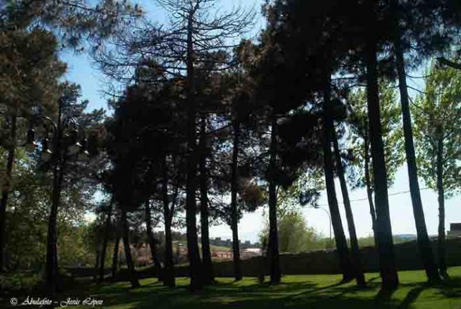 Desde el jard n rom ntico la vi a avila for El jardin romantico