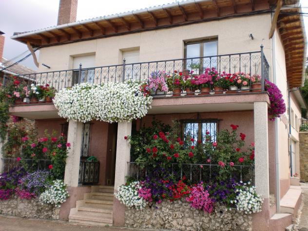 Que adornada de flores teneis la casa villalba de guardo - Casas bien decoradas ...