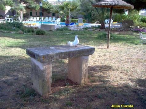 Mesa de piedra y paloma campos del port islas baleares - Mesas de piedra ...