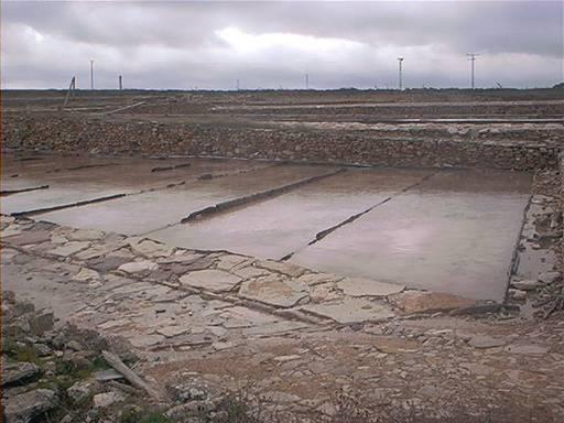 Las eras de las salinas de pinilla viveros albacete for Viveros albacete