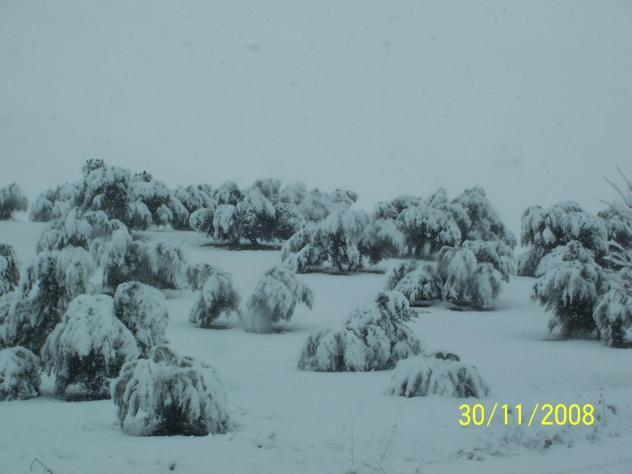 Gran nevazo alcala la real ja n - Antonio daza alcala la real ...