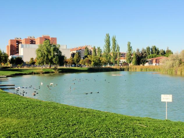 Resultado de imagen de lago LAGUNA DE DUERO