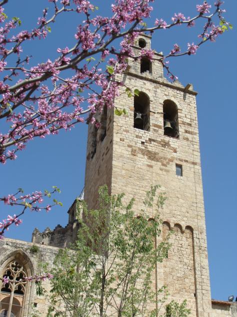 Nuevos rboles sant cugat del valles barcelona - Temperatura actual en sant cugat del valles ...