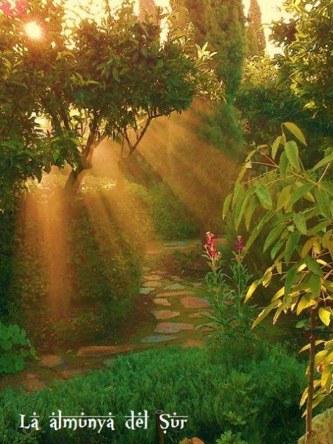 El ejido almer a for Jardin botanico el ejido