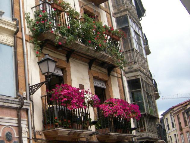 Balcones con flores oviedo asturias for Balcones con plantas